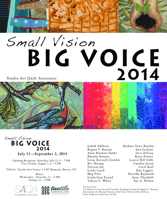 Small Vision, Big Voice 2014